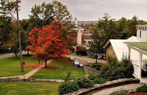View of trees with fall foliage in a park overlooking a charming town.